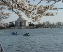 Paddleboating in the Tidal Basin. Photo by: Destination DC